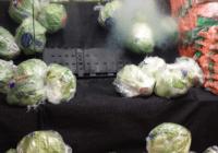 produce aisle lettuce on sale